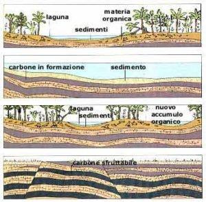 formazione carbone